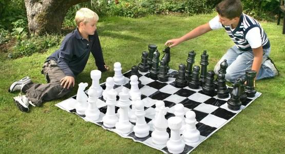 Поле виниловое шахматное 175х175 см