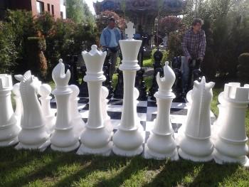 Ростовые шахматы ГШ-155