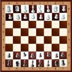 Демонстрационные шахматы 100х100