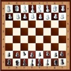 Демонстрационные Шахматы-шашки 100х100